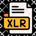 Xlr File Type File Format Icon