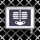 Xray X Ray Skeleton Icon