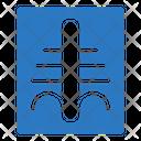 Xray Medical Skeleton Icon