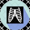 Xray Rib Bones Icon