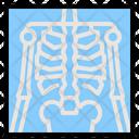 Chest X Ay Medicine Icon