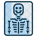 Xray Ray Bone Icon