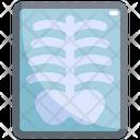 Xray Radiology X Ray Icon
