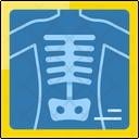 Xray Medical Radiology Icon