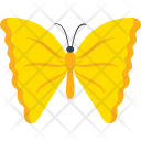 Yellow Angled Sulphur Species Icon