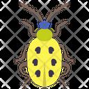 Yellow Beetle Icon