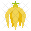 Ylang Flower Smell Icon