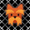 Yorkshire Terrier Dog Puppy Icon