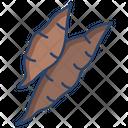 Yucca Icon