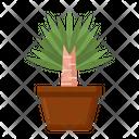 Yucca Fresh Vegetable Vegetarian Icon