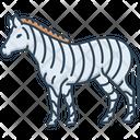 Zebra Black And White Fauna Icon