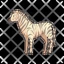 Zebra Africa Mammal Icon