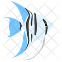 Zebra Blue Angelfish Sea Creature Animal Icon
