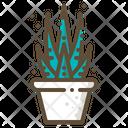 Zebra plant Icon