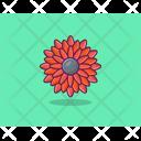 Zinia Sunflower Flower Icon