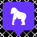 Monkey Gorilla Location Icon