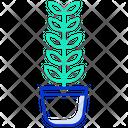 Zz Plant Zz Pot Indoor Plant Icon