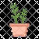 Zz Plant Indoor Plant Plant Icon