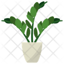 Zz Potted Plant Icon