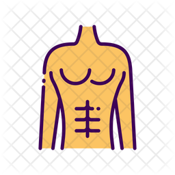 Abdominal Exercise Icon