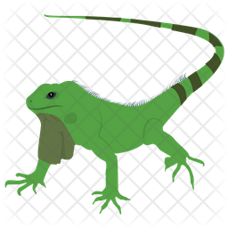 Agamidae Lizard Icon