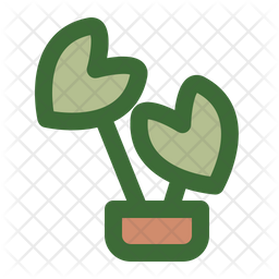 Alocasia Frydek Icon