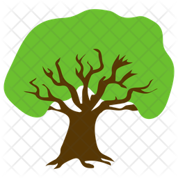 Apple Tree Icon