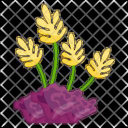 Aquatic Plants Icon