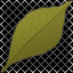 Ash Leaf Icon