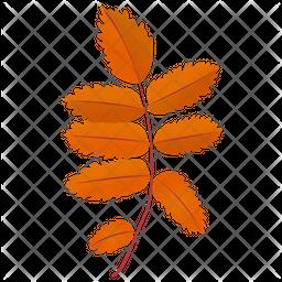 Ash Leaves Icon