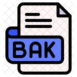 Bak Document Colored Outline Icon