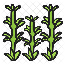 Bamboo Shoots Icon Of Colored Outline Style Available In Svg Png Eps Ai Icon Fonts