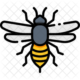 Bee Icon Of Colored Outline Style Available In Svg Png Eps Ai Icon Fonts