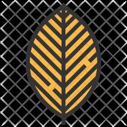 Beech Icon