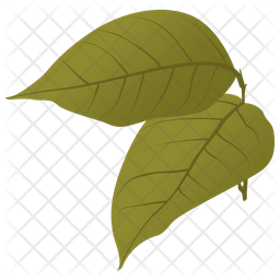 Birch Leaves Icon