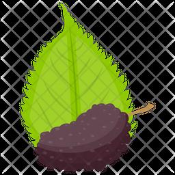 Black Raspberry Icon