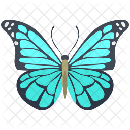 blue morpho butterfly icon of colored outline style available in svg png eps ai icon fonts blue morpho butterfly icon
