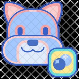 Blueberry Facial Icon