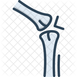 Bone Joint Colored Outline Icon