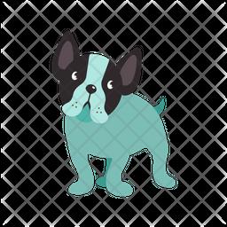 Boston Terrier Dog Icon