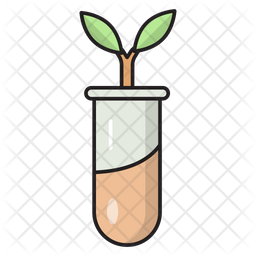 Botany Experiment Colored Outline Icon