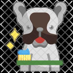 Brush Dog Teeth Icon