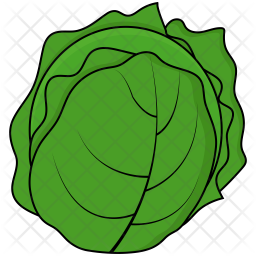 Cabbage Icon Of Colored Outline Style Available In Svg Png Eps Ai Icon Fonts