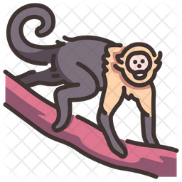 Capuchin Icon