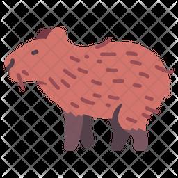 Capybara Icon