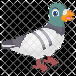 Cartoon Pigeon Icon