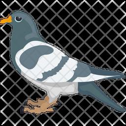 Cartoon Pigeon Flat Icon