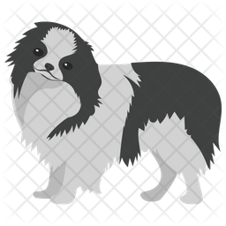Chow Chow Icon
