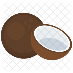 Coconut Fruit Vector Icon