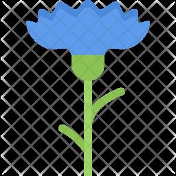 Cornflower Icon